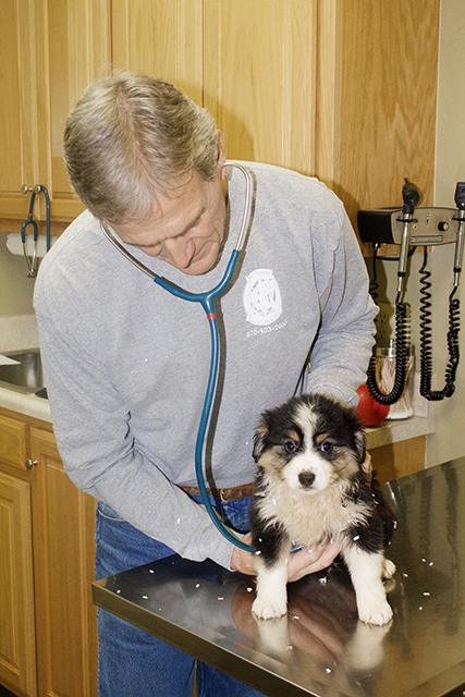 Dr. Eby with puppy